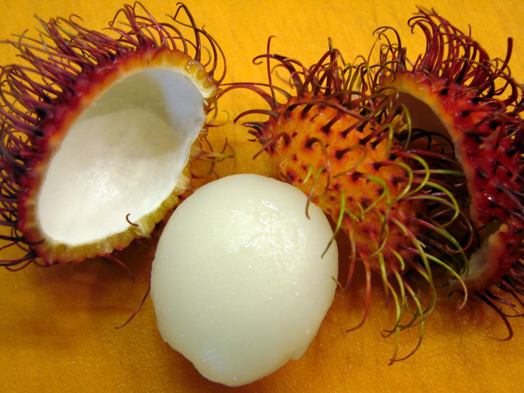 The rambutan skin cuts off easily. Within each fruit is a pit, which is not edible and must be removed.